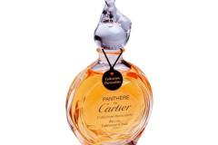 Parfüm Kosmetik